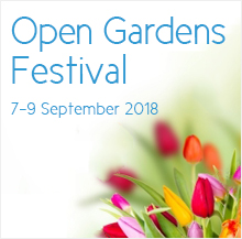 Helderberg-Hospice-Open-Gardens-2018-Sep